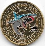 Mer et Océan - Animaux marins Requin10