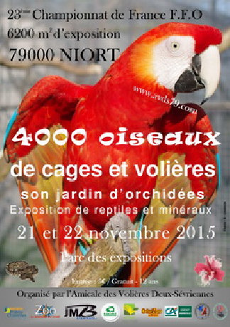 National FFO 2015 à Niort (79). Ffo00210