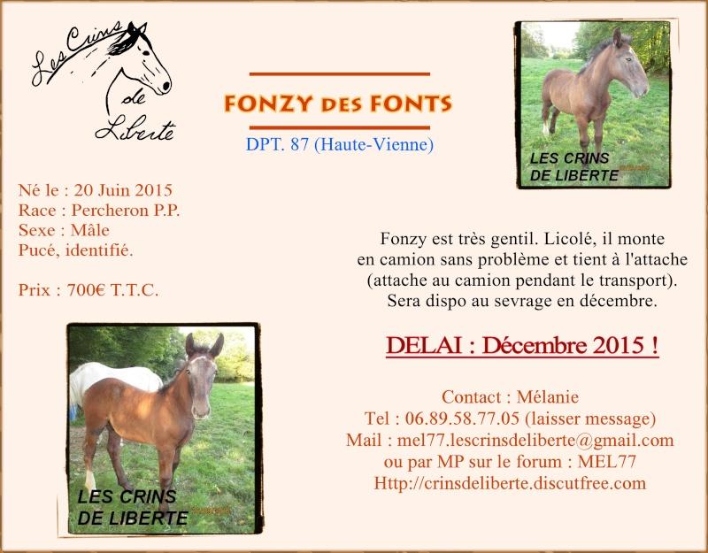(Dept 87) FONZY DES FONTS - Percheron PP sauvé par Amanda en SUEDE!! (Janvier 2016) Fonzy_10