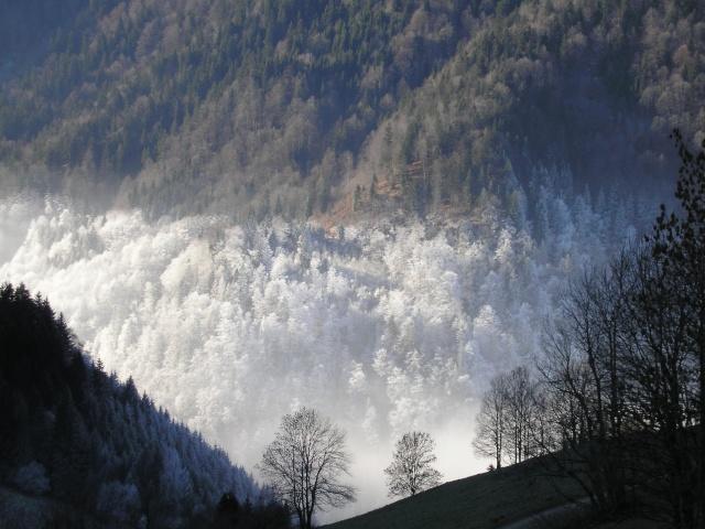 Photographie: vallée du Petit Bornand Pc260110