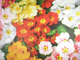 Retalhos de tecidos - novos tecidos G2010