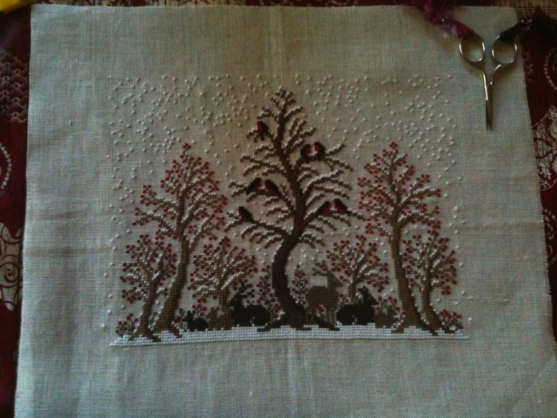 Les arbres de Renato ! Image110