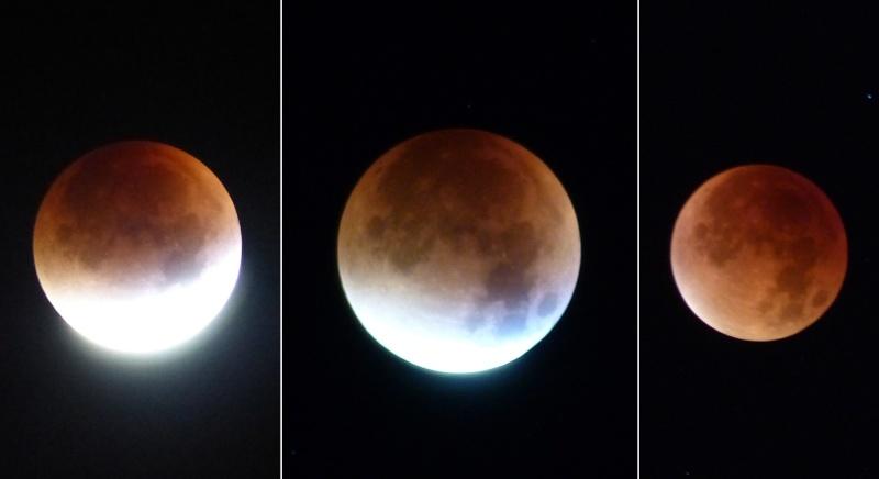 Eclipse totale de Lune - 28 septembre 2015 P1090910