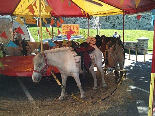 Article à paraitre : Les chevaux taulards (de club) : Qui veut témoigner? - Page 5 Images10