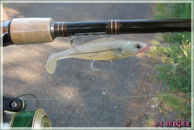 Mon ouverture 2ème catégorie (le poisson est absent) P5010112