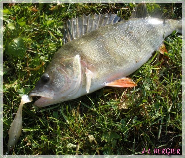 Mon ouverture 2ème catégorie (le poisson est absent) P5010116