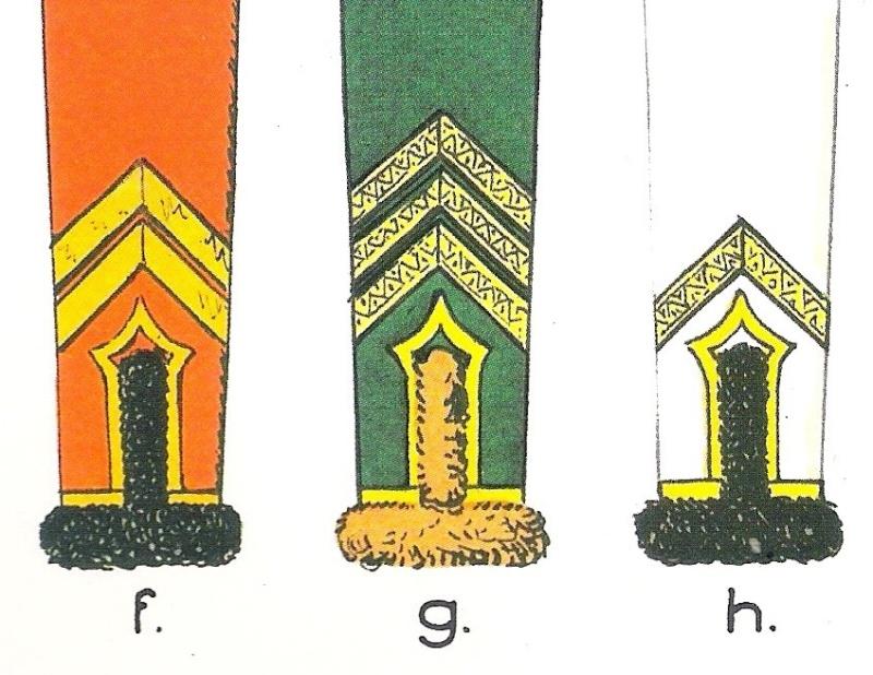Garde d'Honneur en 180 mm - Page 4 Galons14