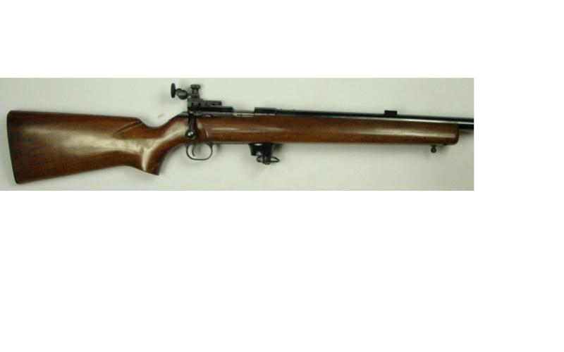 Choix d'une arme US 22lr pour le TAR  - Page 2 Win52_10