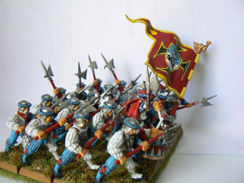 Mon Armée du Culte d'Ulric et du Middeinhem. C2c_ha10