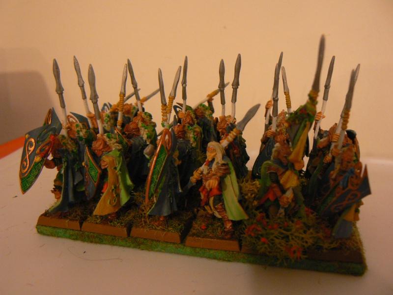 Mon Armée Elfes Sylvains - Page 2 P1130612