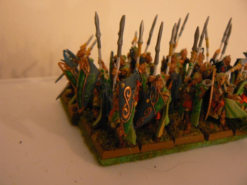 Mon Armée Elfes Sylvains - Page 2 P1130613