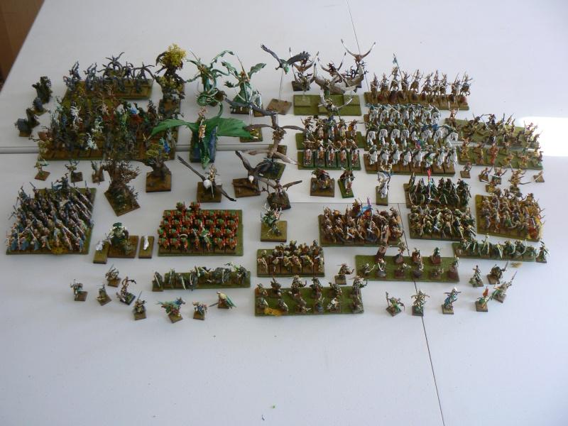 Mon Armée Elfes Sylvains - Page 2 P1130716