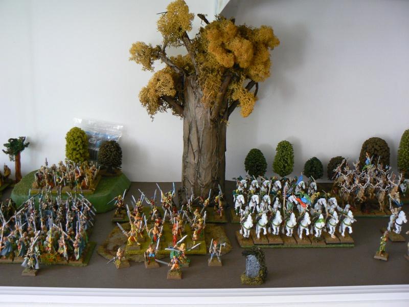 Mon Armée Elfes Sylvains - Page 2 P1130719