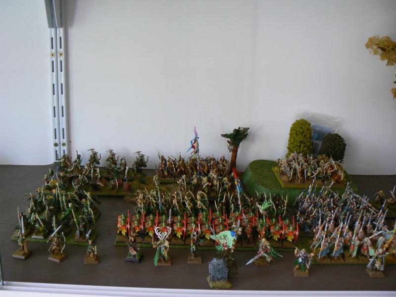 Mon Armée Elfes Sylvains - Page 2 P1130720