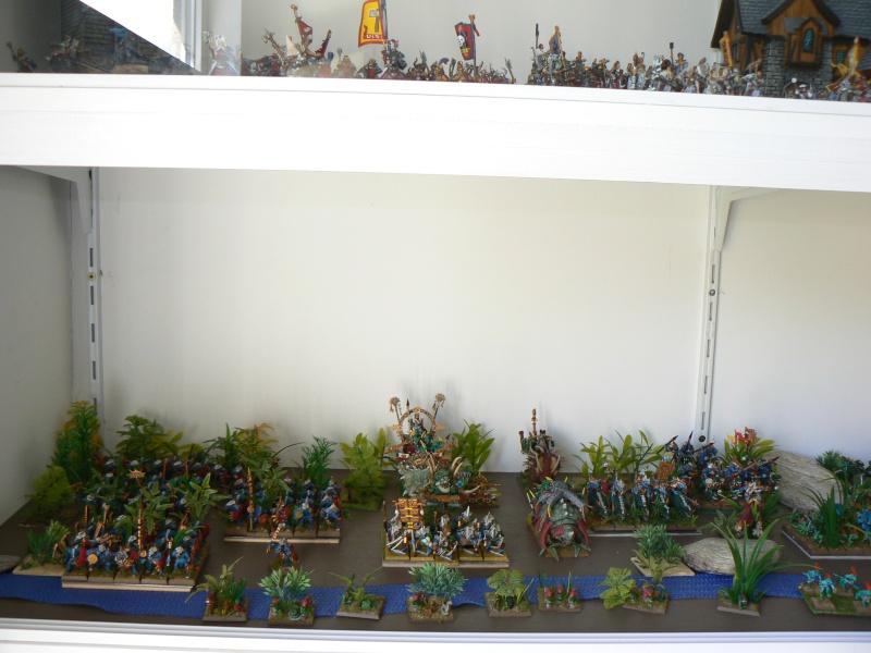 Mon armée de Lustrie P1130721