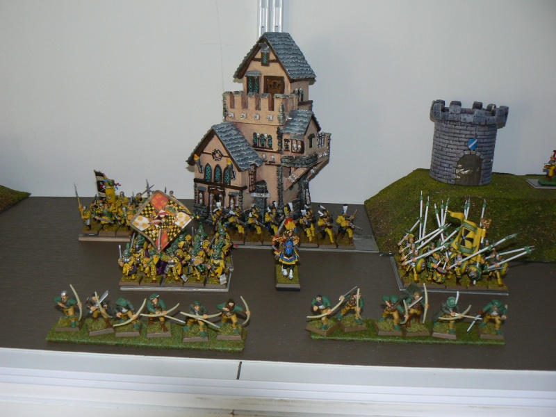 Mon armée d'Averland - Page 2 P1130726
