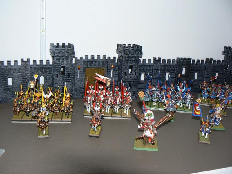 Mon Armée de L'Empire traditionnelle. P1130811