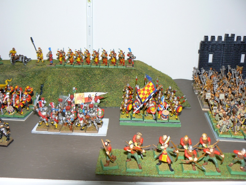 Mon Armée de L'Empire traditionnelle. P1130815
