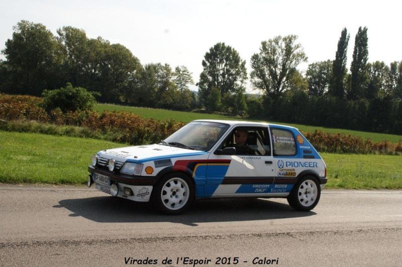 [26] 27/09/2015 - Virades de l'Espoir - Parc de Lorient Dsc08435