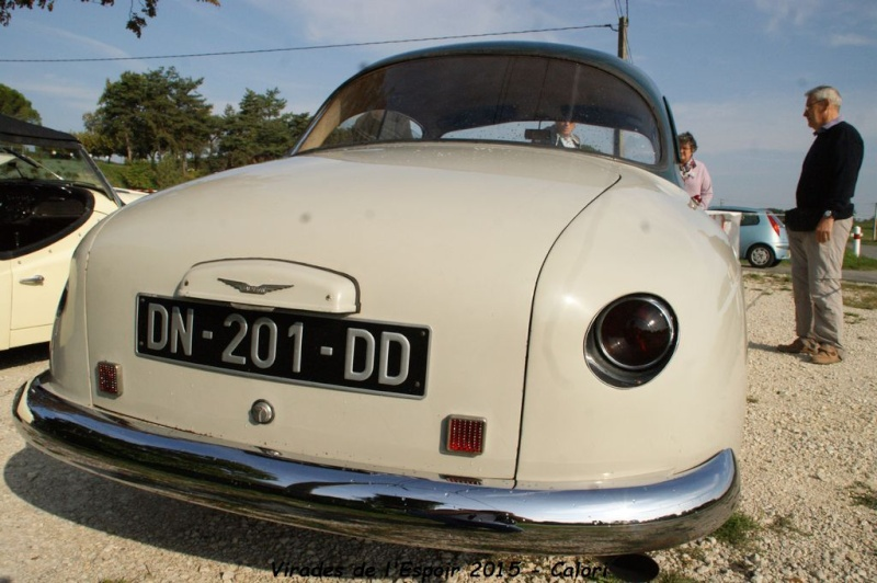 [26] 27/09/2015 - Virades de l'Espoir - Parc de Lorient Dsc08471