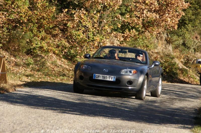 [26] 11/11/2015 - Sortie Hivernale à Saulce sur Rhône - Page 3 Dsc09557