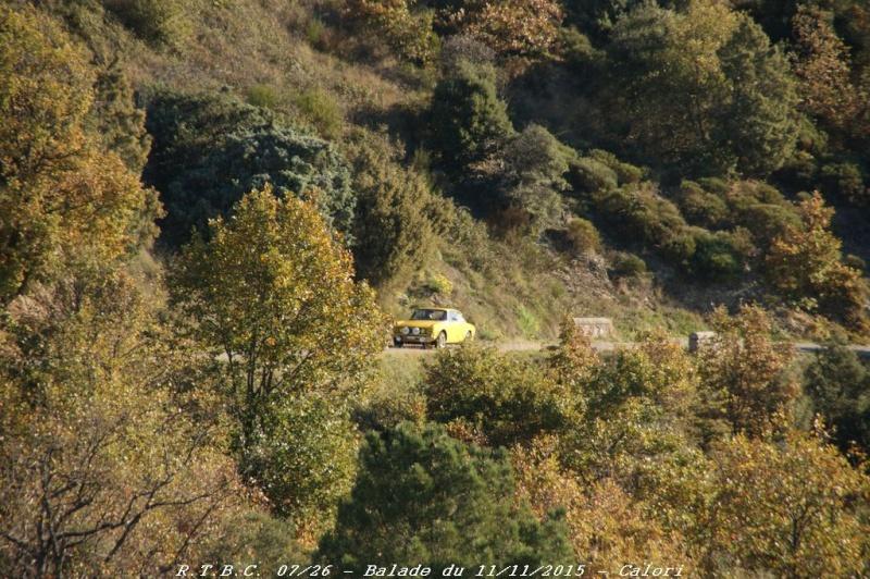 [26] 11/11/2015 - Sortie Hivernale à Saulce sur Rhône - Page 5 Dsc09582