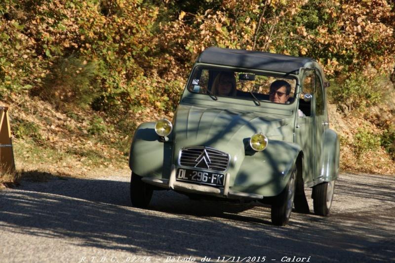 [26] 11/11/2015 - Sortie Hivernale à Saulce sur Rhône - Page 3 Dsc09636