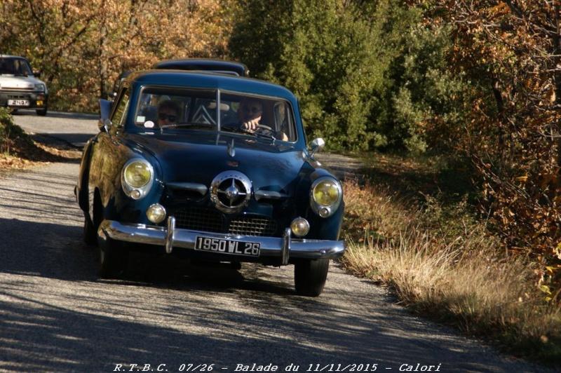 [26] 11/11/2015 - Sortie Hivernale à Saulce sur Rhône - Page 3 Dsc09641