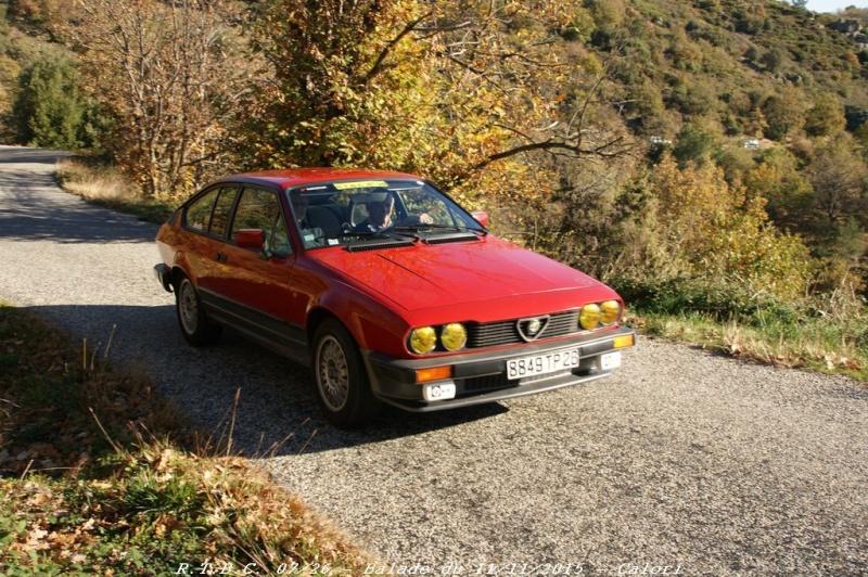 [26] 11/11/2015 - Sortie Hivernale à Saulce sur Rhône - Page 5 Dsc09680