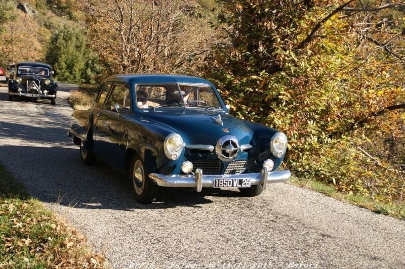 [26] 11/11/2015 - Sortie Hivernale à Saulce sur Rhône - Page 5 Dsc09683