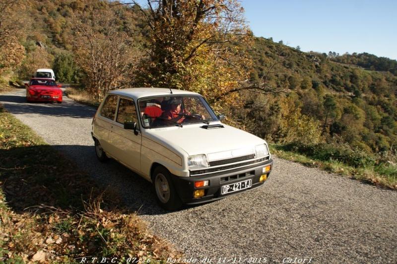 [26] 11/11/2015 - Sortie Hivernale à Saulce sur Rhône - Page 5 Dsc09684
