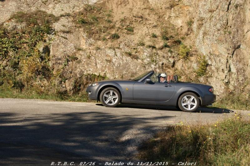 [26] 11/11/2015 - Sortie Hivernale à Saulce sur Rhône - Page 5 Dsc09762