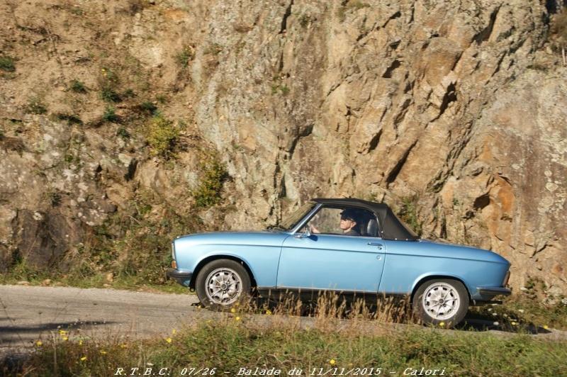 [26] 11/11/2015 - Sortie Hivernale à Saulce sur Rhône - Page 5 Dsc09765