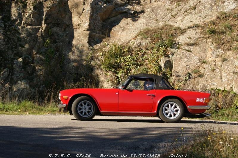 [26] 11/11/2015 - Sortie Hivernale à Saulce sur Rhône - Page 5 Dsc09771