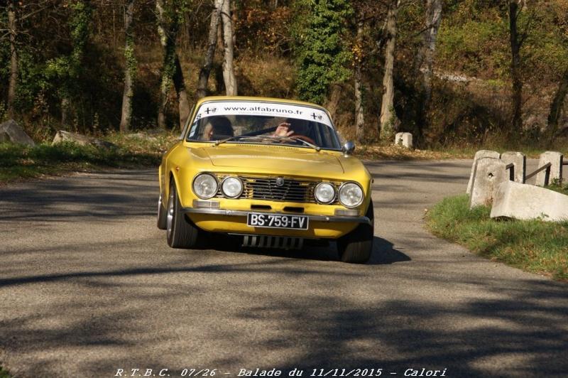 [26] 11/11/2015 - Sortie Hivernale à Saulce sur Rhône - Page 5 Dsc09863