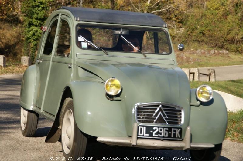 [26] 11/11/2015 - Sortie Hivernale à Saulce sur Rhône - Page 5 Dsc09865