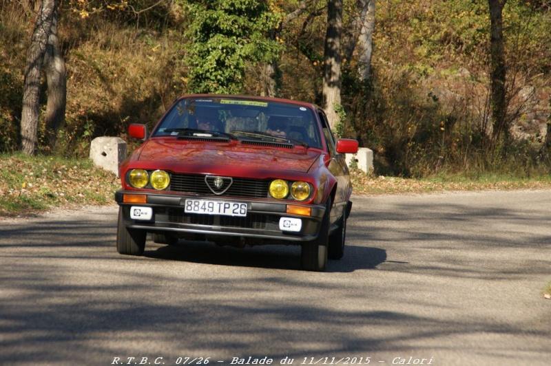 [26] 11/11/2015 - Sortie Hivernale à Saulce sur Rhône - Page 5 Dsc09869