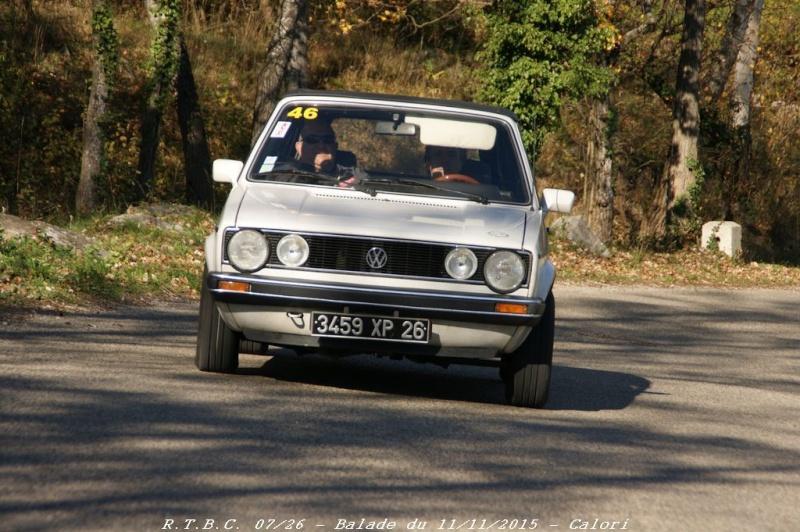 [26] 11/11/2015 - Sortie Hivernale à Saulce sur Rhône - Page 5 Dsc09922