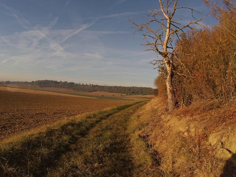 idées de traces autour de Toulouse ? - Page 4 Ph000413
