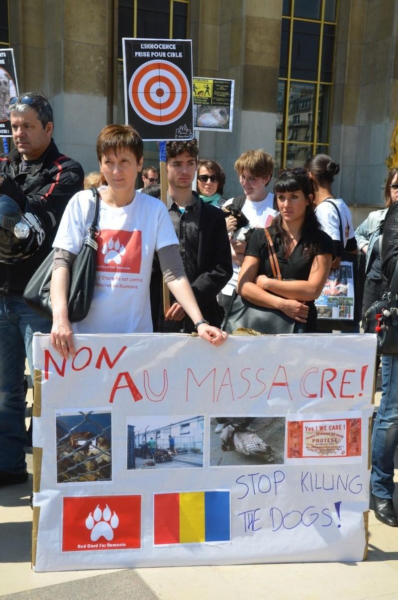 APPEL AUX DONS SANS  VOTRE SOUTIEN L'ARCHE D'ETERNITE VA CESSER DE VIVRE - Page 3 J5nsnm10