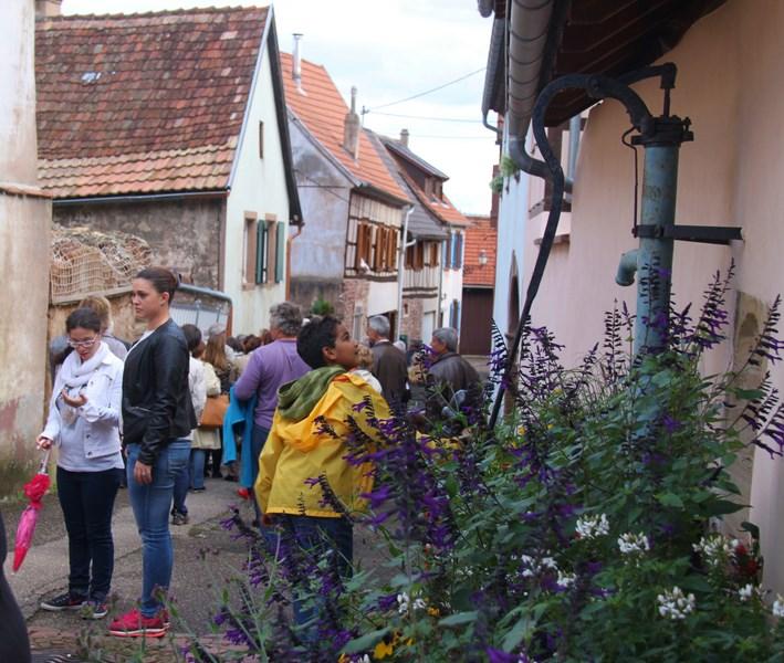 Wangen: journée européenne du patrimoine samedi 19 septembre 2015 Img_0522