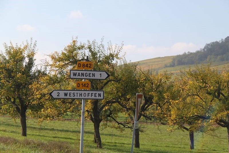 Wangen, automne 2015 Img_0814