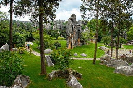 Bosque Royale[Zona Rol, Zona Batallas, Zona Busqueda] Piedra10