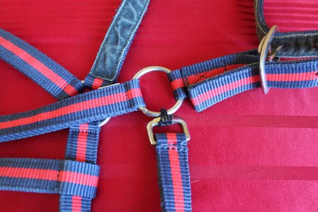 Brade divers affaires d'équitation : gilet, sangle, tapis, embouchures, plaque à neige... Img_9419