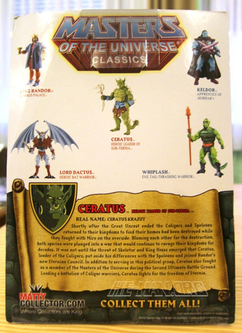 MASTERS OF THE UNIVERSE Classics (Mattel) 2008+ - Page 42 Graysk11