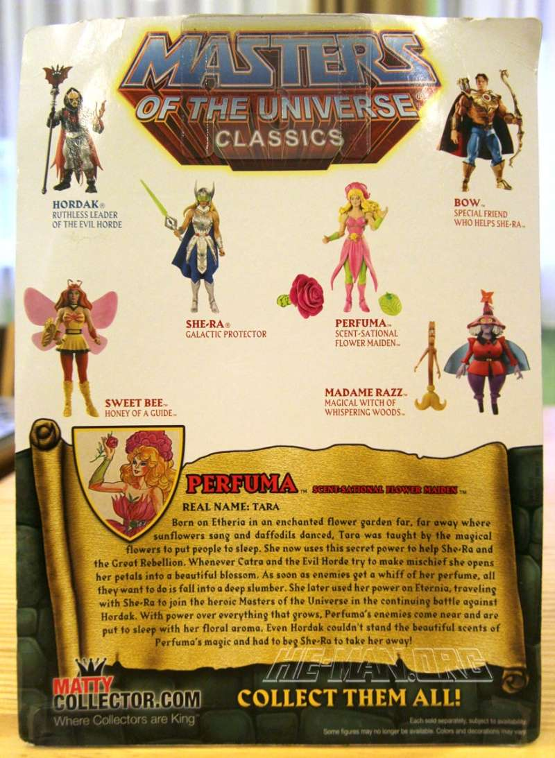 MASTERS OF THE UNIVERSE Classics (Mattel) 2008+ - Page 42 Graysk15