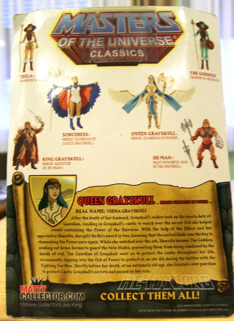 MASTERS OF THE UNIVERSE Classics (Mattel) 2008+ - Page 42 Graysk19