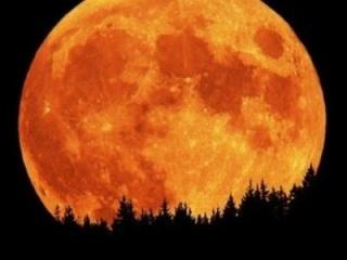 La face cachée de la Lune Moonbi10