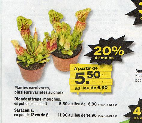 COOP Brico+Loisirs - Action -20% plantes carnivores - 07/06/2011 au 18/06/2011 Jumbo10
