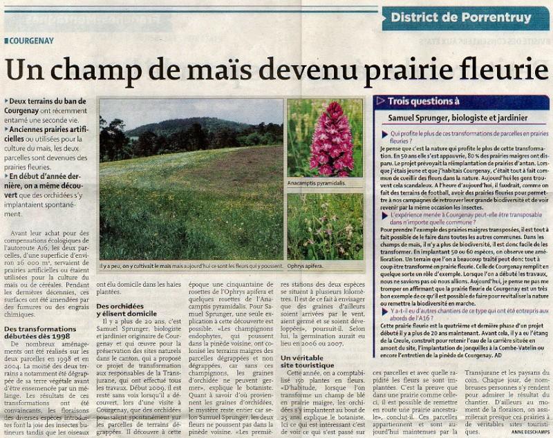 Journal Quotidien jurassien - 23/09/2010 - un champ de maïs devenu prairie fleurie Quot_j11